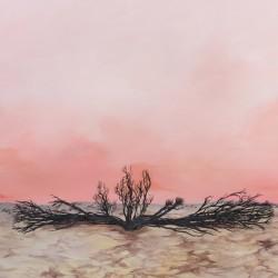 Mountain Dust - Seven Storms Lp Vinilo De Negro Edición Limitada Portada Gatefold