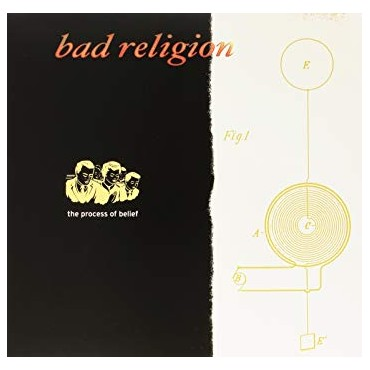 Bad Religion - The Process Of Belief Lp Vinilo De Color Portada Gatefold Edición Limitada
