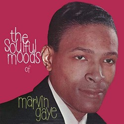 Marvin Gaye - The Soulful...